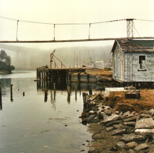 Fort Bragg, California. 2012. Yashica Flex 120mm.