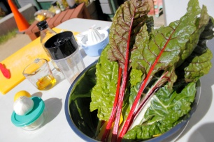 School Grown Rainbow Chard