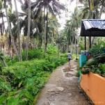Explore the Backroads Behind the Beach Pomenade